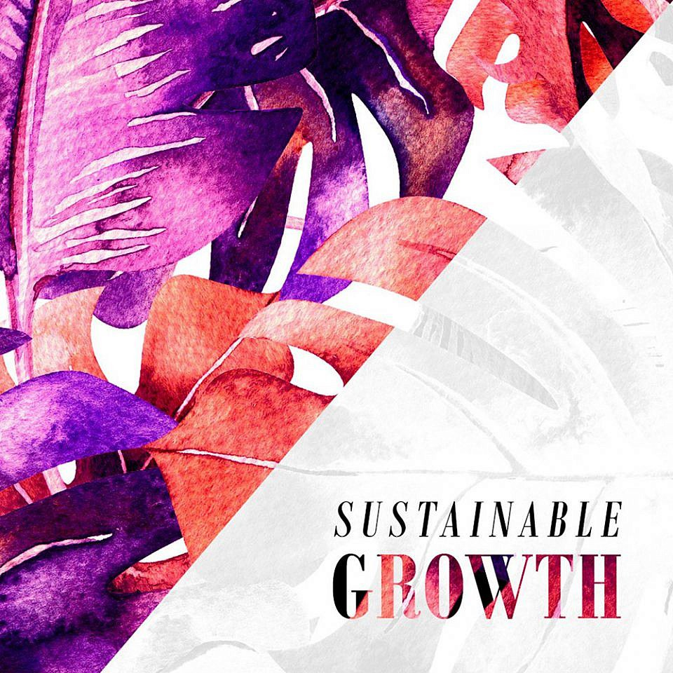 Sustainable Growth